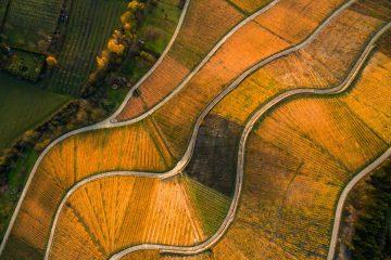 Luftbild Thüngersheim